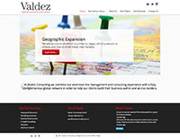 Valdez Consulting website